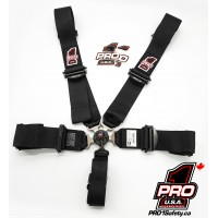 Pro Elite Cam Lock Safety Harness Seat Belts - Door Car