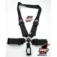 Pro Elite Cam Lock Safety Harness Seat Belts - Dragster