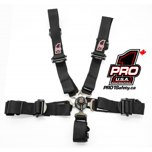 Junior Dragster Seat Belts
